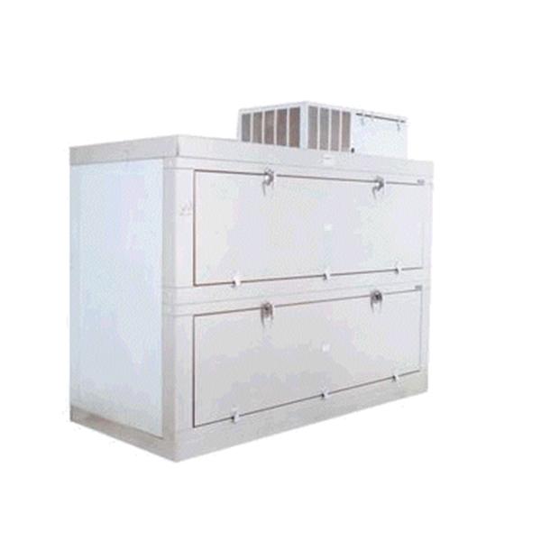 Mortuary Cabinet & Freezer